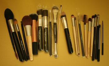 brushes-350